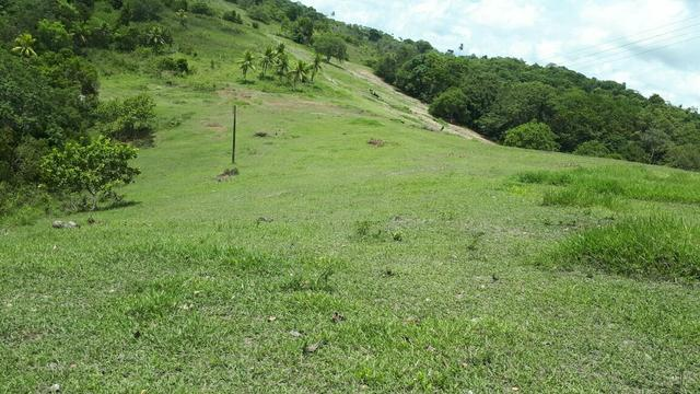 Sítio com 11.67 hectares em Igarassu/PE