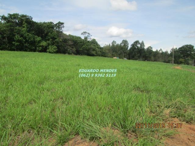 Oportunidade de adquirir sua Chácara de lazer c/ água a 1 km de Gameleira de GO - Foto 3