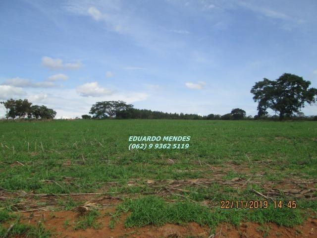 Oportunidade de adquirir sua Chácara de lazer c/ água a 1 km de Gameleira de GO - Foto 2