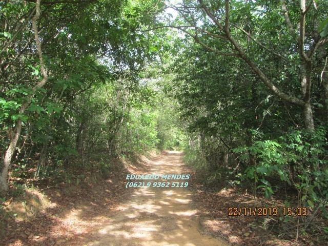 Oportunidade de adquirir sua Chácara de lazer c/ água a 1 km de Gameleira de GO - Foto 13