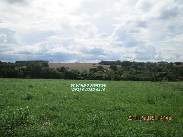 Oportunidade de adquirir sua Chácara de lazer c/ água a 1 km de Gameleira de GO - Foto 11