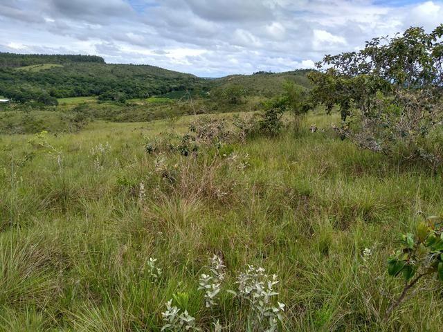 Sítio com 38 hectares as margens do Ribeirao Ze Pedro!