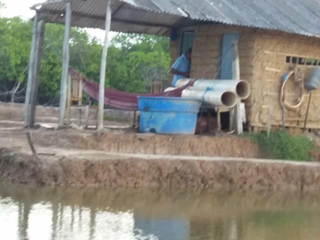 Vende se ou troca em carro de meu interesso um viveiro de camarão em pirambu - Foto 4