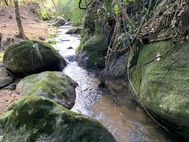 Sítio Recanto das águas em Santa Teresa, Lindo - Foto 20