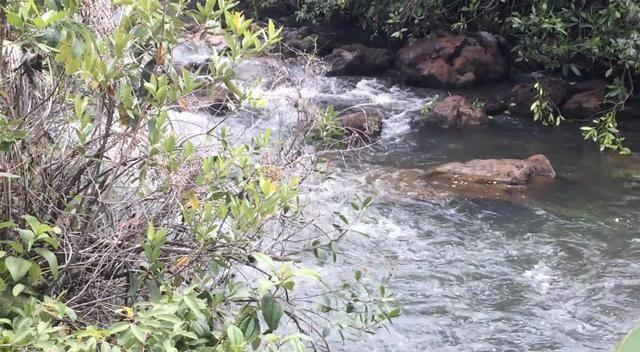Sitio no Formoso - Buritizeiro MG
