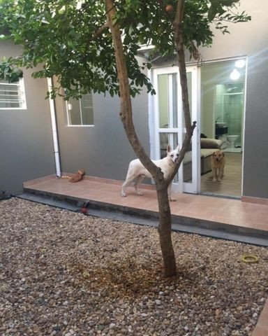 Casa a venda no bairro Cidade Jardim, Sorocaba, 3 dormitórios sendo 1 suíte - Foto 18