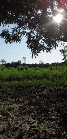Terreno na área rural - Foto 4