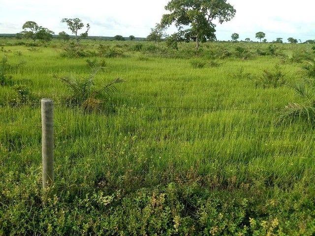 Fazenda/Sítio/Chácara para venda com 3500 metros quadrados com 3 quartos