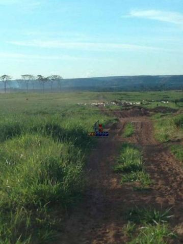 Belíssima fazenda a venda na divisa de Rondônia com o estado de mato grosso - Foto 20