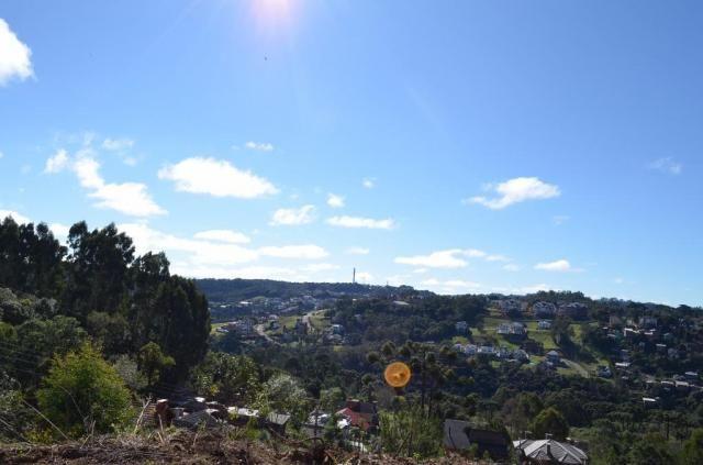 Terreno residencial à venda, vale das colinas, gramado.