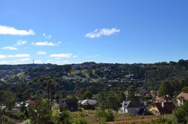 Terreno residencial à venda, vale das colinas, gramado. - Foto 8