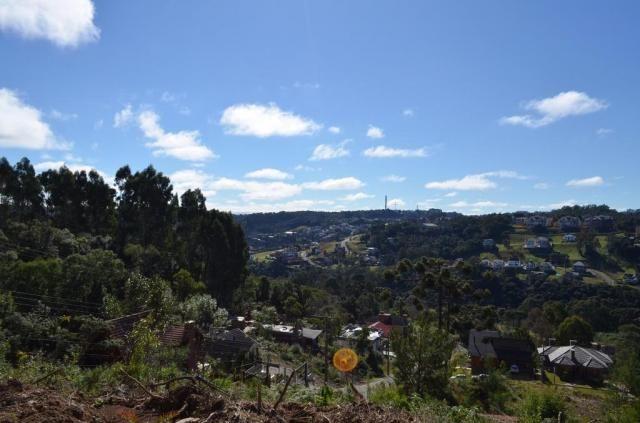 Terreno residencial à venda, vale das colinas, gramado. - Foto 2