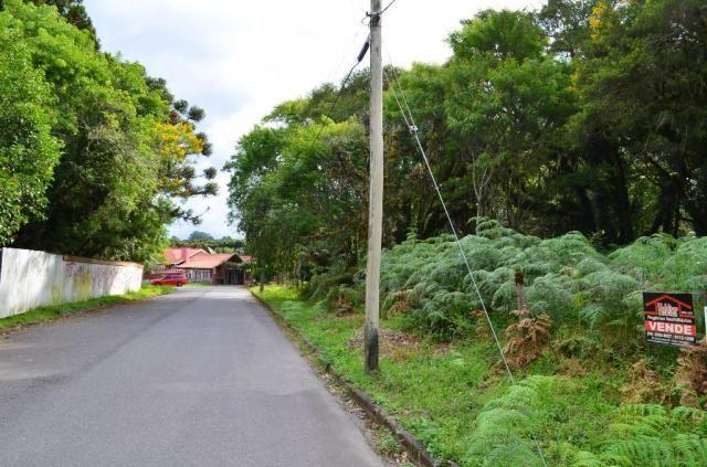 Terreno à venda, 5000 m² por r$ 3.500.000,00 - vila suica - canela/rs - Foto 7