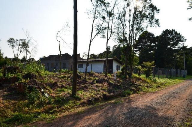 Terreno residencial à venda, vale dos pinheiros, gramado. - Foto 2
