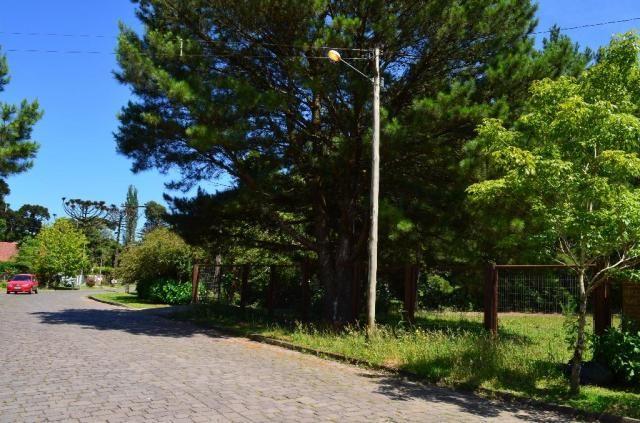 Terreno à venda, 3945 m² por R$ 3.500.000,00 - Centro - Canela/RS - Foto 3