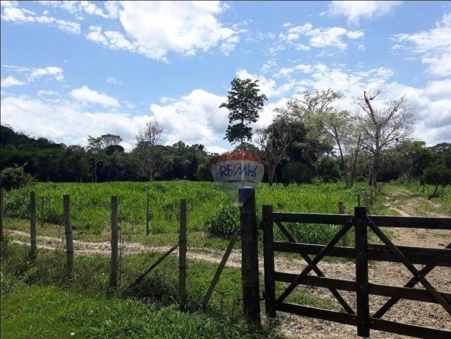 Fazenda à venda em Porto Seguro (Vera Cruz), Bahia - Foto 5