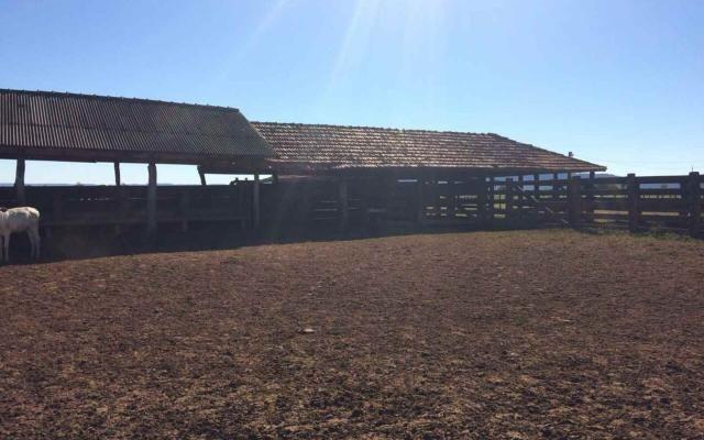 Fazenda em Nova Olímpia MT 550 hectares - Foto 4
