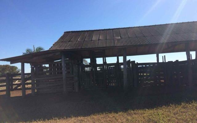 Fazenda em Nova Olímpia MT 550 hectares - Foto 5