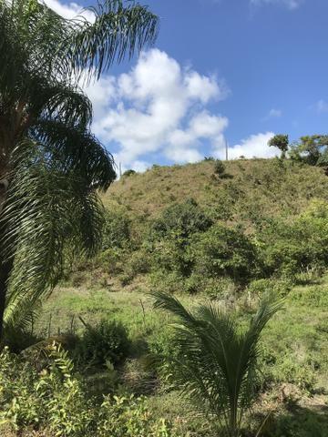 Sítio em Barreiros - Foto 2