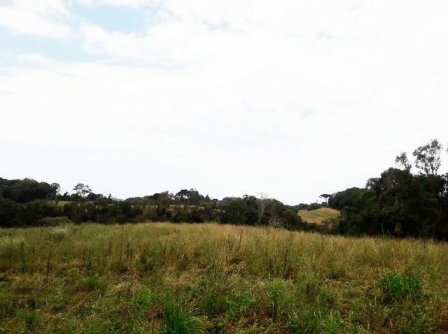 Ref. 2518 Excelente terreno para formar chácara, contendo 46.270,34 m² - Foto 6