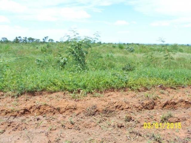 Fazenda 5276 ha N. Brasilandia MT - Foto 8