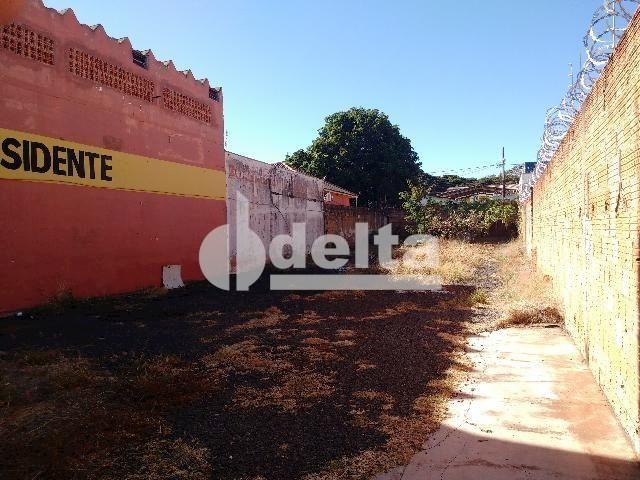 Terreno para alugar com 0 dormitórios em Umuarama, Uberlândia cod:567245 - Foto 2