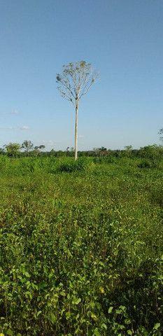 Terreno na área rural