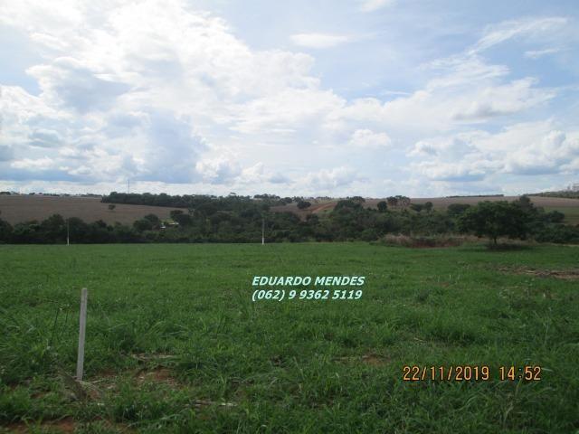 Oportunidade de adquirir sua Chácara de lazer c/ água a 1 km de Gameleira de GO - Foto 7