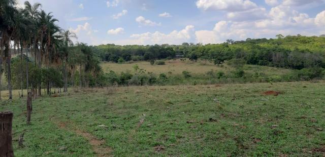 Fazenda 38 Alqueires em Bela Vista - Foto 7