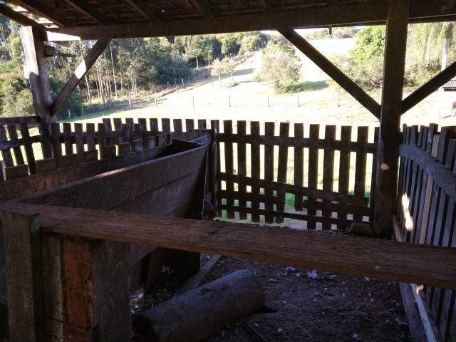 Velleda oferece sítio 3 hectares, 3 dormitórios, horta irrigada, 2 piscinas, açude - Foto 2