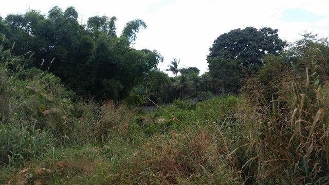 Área à venda, 9622 m² por R$ 1.480.000 - Jardim Cristal - Aparecida de Goiânia/GO - Foto 5