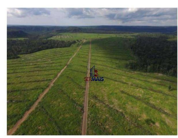 Belíssima fazenda a venda na divisa de Rondônia com o estado de mato grosso - Foto 11