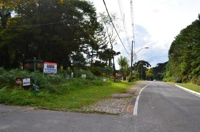 Terreno à venda, 5000 m² por r$ 3.500.000,00 - vila suica - canela/rs - Foto 5