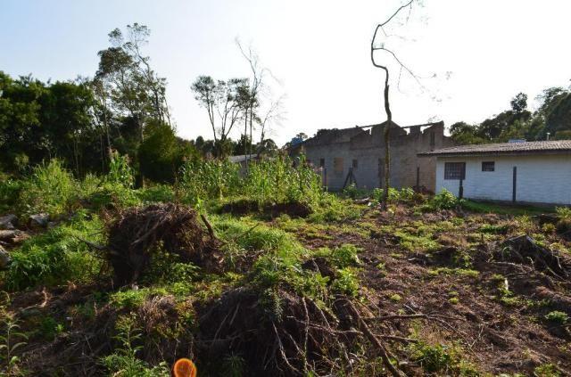Terreno residencial à venda, vale dos pinheiros, gramado. - Foto 3