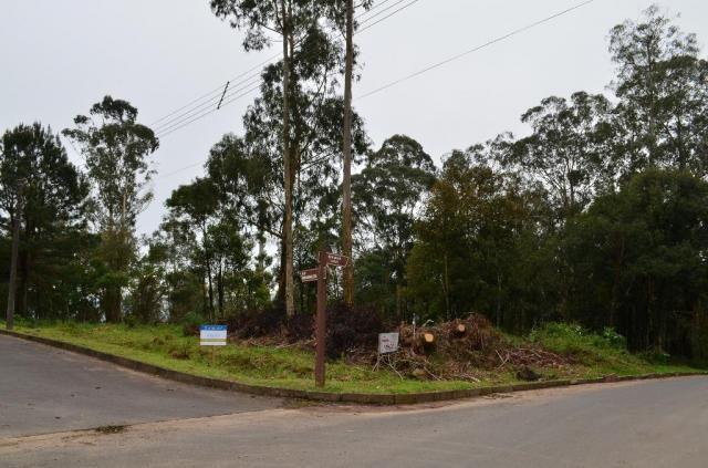Terreno residencial à venda, casa grande, gramado.