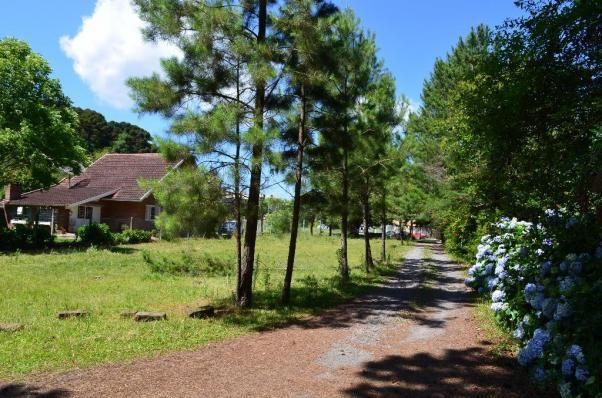 Terreno à venda, 3945 m² por R$ 3.500.000,00 - Centro - Canela/RS - Foto 11