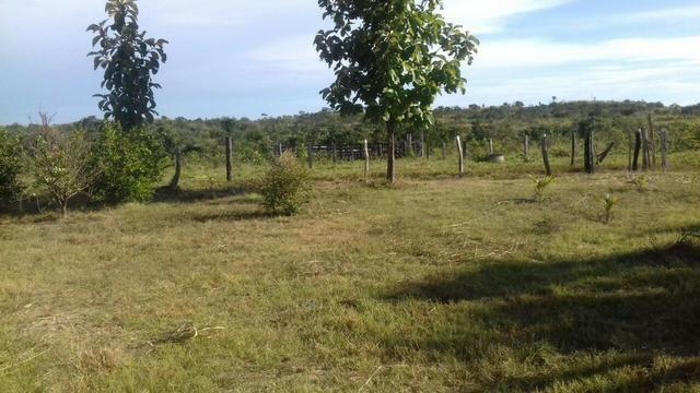 Vendo Sitio / Chácara 72 hectares, Pecuária ou lavoura, Casa, energia, Agua, Nobres - Foto 5