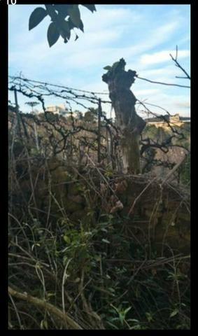 Terreno no Vale dos Vinhedos - Foto 10
