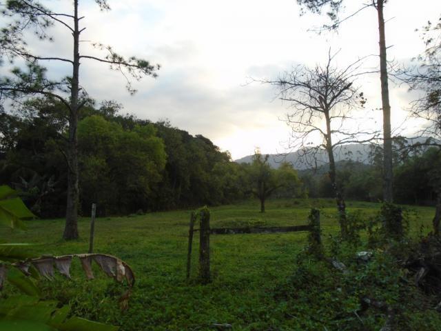 Terreno para alugar em Zona industrial norte, Joinville cod:06691.006 - Foto 3