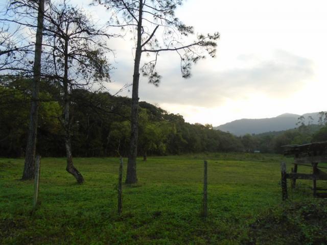 Terreno para alugar em Zona industrial norte, Joinville cod:06691.006