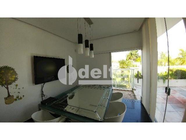 Casa para alugar com 0 dormitórios em Patrimônio, Uberlândia cod:559204 - Foto 16