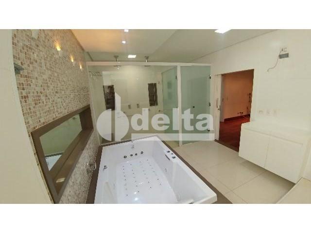 Casa para alugar com 0 dormitórios em Patrimônio, Uberlândia cod:559204 - Foto 19