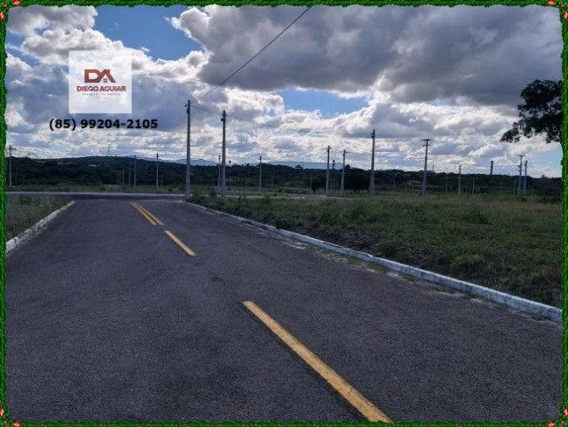 Lotes Terras Horizonte #$%¨&*( - Foto 12