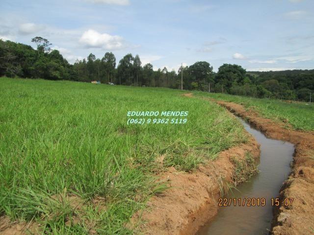 Oportunidade de adquirir sua Chácara de lazer c/ água a 1 km de Gameleira de GO - Foto 10