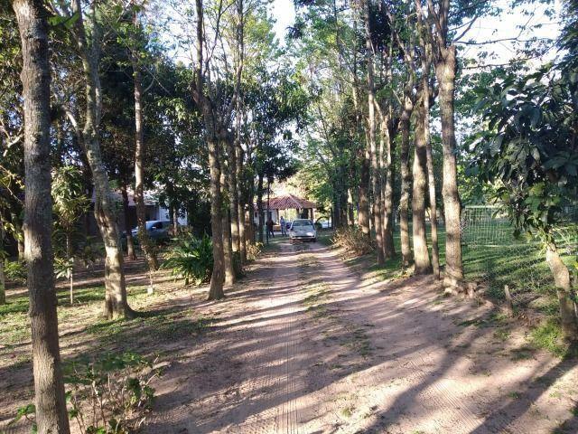 Velleda oferece sítio 3 hectares, 3 dormitórios, horta irrigada, 2 piscinas, açude - Foto 6