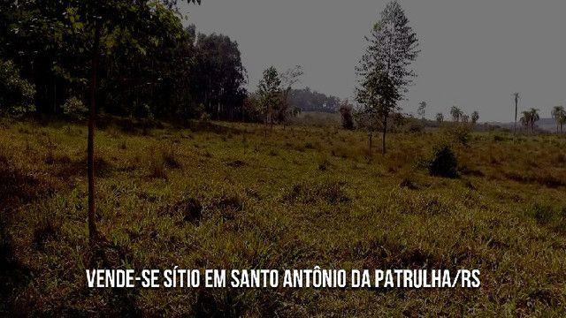 Sítio em Santo Antônio da Patrulha 10 Hectares. Peça o Vídeo Aéreo