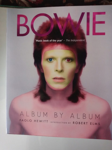 David Bowie: Album By Album