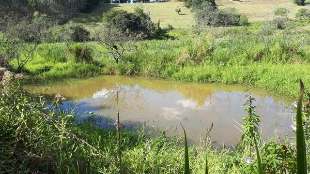 Lindo sitio 14.000m2 vom lago em pinhalzinho sp - Foto 3