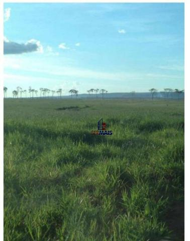 Belíssima fazenda a venda na divisa de Rondônia com o estado de mato grosso - Foto 19