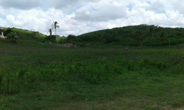 Vende Sítio Santa Laura 9,5 hectares